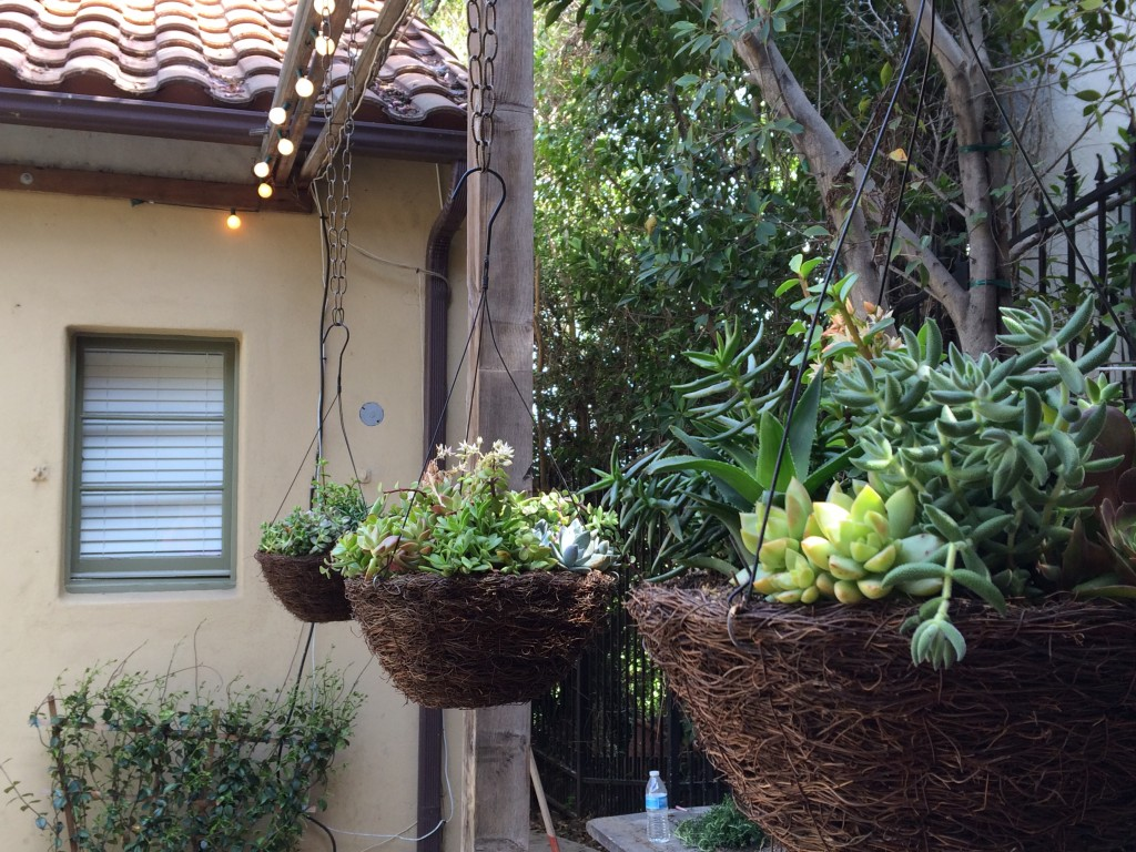 Hanging baskets with more succulents to tie the areas together.
