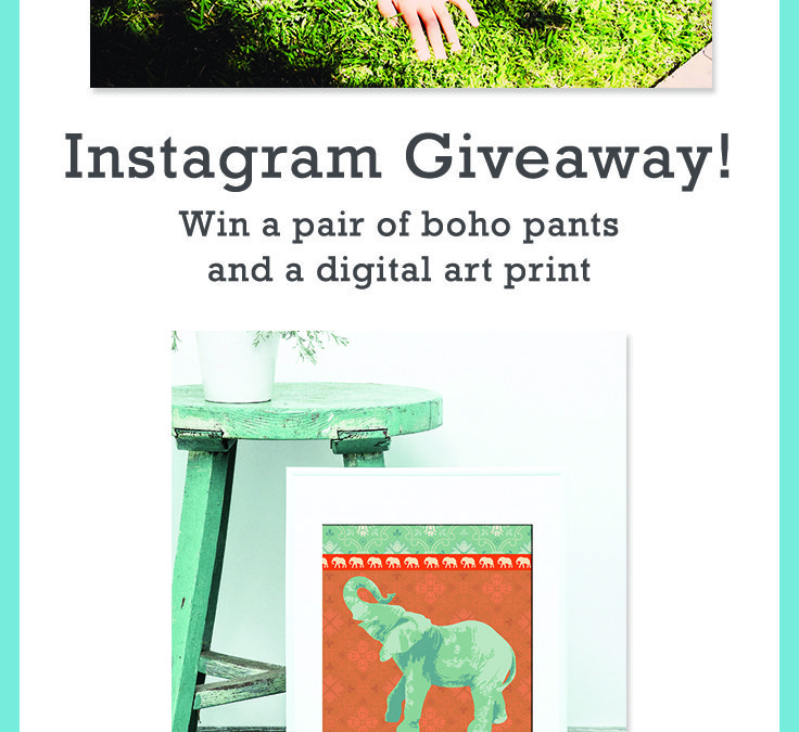 Check out our Instagram Giveaway!